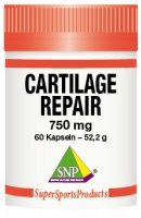 Cartilage Repair Rein